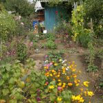 Urban gardeners as localised prosumers within circular economy: Case studies of home, allotment and community gardening